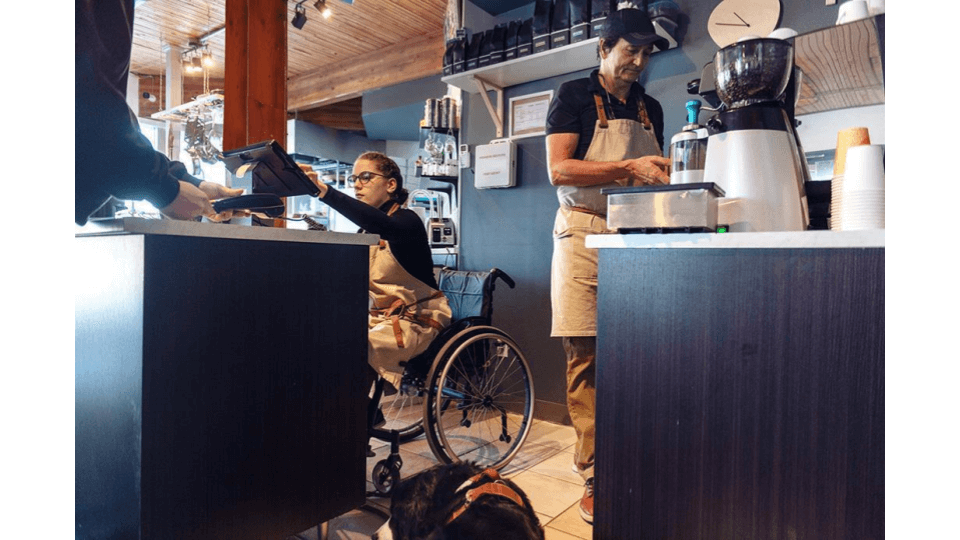 disablity and career